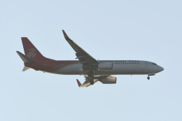 kuro2059さんが、中部国際空港で撮影した深圳航空 737-87Lの航空フォト(飛行機 写真・画像)