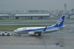 kumagorouさんが、福岡空港で撮影した全日空 737-781の航空フォト(飛行機 写真・画像)
