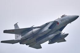 いっち〜@RJFMさんが、新田原基地で撮影した航空自衛隊 F-15J Eagleの航空フォト(飛行機 写真・画像)