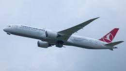 Bluewingさんが、成田国際空港で撮影したターキッシュ・エアラインズ 787-9の航空フォト(飛行機 写真・画像)