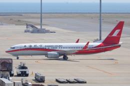 わんだーさんが、中部国際空港で撮影した上海航空 737-86Dの航空フォト(飛行機 写真・画像)