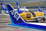 パンダさんが、羽田空港で撮影した全日空 777-281/ERの航空フォト(飛行機 写真・画像)