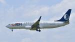 パンダさんが、成田国際空港で撮影した山東航空 737-85Nの航空フォト(飛行機 写真・画像)