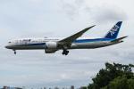 A.Tさんが、伊丹空港で撮影した全日空 787-9の航空フォト(飛行機 写真・画像)