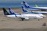 なごやんさんが、中部国際空港で撮影した全日空 737-881の航空フォト(飛行機 写真・画像)