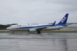 神宮寺ももさんが、那覇空港で撮影した全日空 737-881の航空フォト(飛行機 写真・画像)