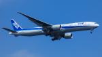 Bluewingさんが、羽田空港で撮影した全日空 777-381/ERの航空フォト(飛行機 写真・画像)