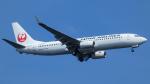 Bluewingさんが、羽田空港で撮影した日本航空 737-846の航空フォト(飛行機 写真・画像)