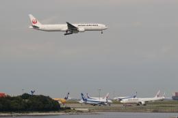 安芸あすかさんが、羽田空港で撮影した日本航空 777-346/ERの航空フォト(飛行機 写真・画像)