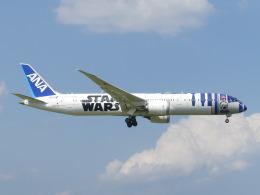 トタさんが、成田国際空港で撮影した全日空 787-9の航空フォト(飛行機 写真・画像)