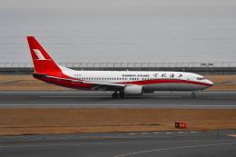 beimax55さんが、中部国際空港で撮影した上海航空 737-8Q8の航空フォト(飛行機 写真・画像)