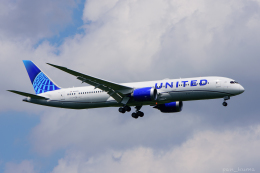 ぱん_くまさんが、成田国際空港で撮影したユナイテッド航空 787-9の航空フォト(飛行機 写真・画像)