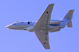 AWACSさんが、入間飛行場で撮影した航空自衛隊 U-125A(Hawker 800)の航空フォト(飛行機 写真・画像)