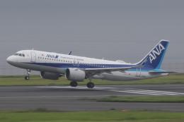 Sharp Fukudaさんが、羽田空港で撮影した全日空 A320-271Nの航空フォト(飛行機 写真・画像)