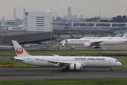 Sharp Fukudaさんが、羽田空港で撮影した日本航空 787-9の航空フォト(飛行機 写真・画像)