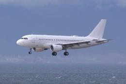 航空フォト:A6-CJE エミレーツ航空 A319