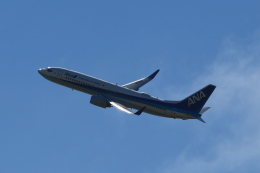 スターアライアンスKMJ まいやんさんが、宮古空港で撮影した全日空 737-881の航空フォト(飛行機 写真・画像)