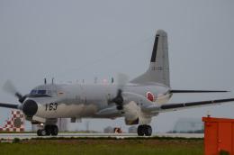 筑波のヘリ撮りさんが、入間飛行場で撮影した航空自衛隊 YS-11A-402EAの航空フォト(飛行機 写真・画像)