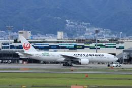T.Sazenさんが、伊丹空港で撮影した日本航空 777-246/ERの航空フォト(飛行機 写真・画像)