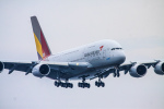 rokko2000さんが、関西国際空港で撮影したアシアナ航空 A380-841の航空フォト(飛行機 写真・画像)