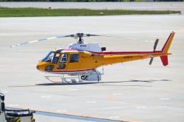 E-75さんが、函館空港で撮影した東邦航空 AS350B Ecureuilの航空フォト(飛行機 写真・画像)