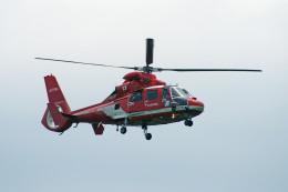 apphgさんが、静岡空港で撮影した名古屋市消防航空隊 AS365N3 Dauphin 2の航空フォト(飛行機 写真・画像)