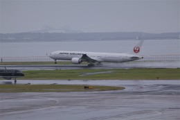 アシタノソラさんが、羽田空港で撮影した日本航空 777-346/ERの航空フォト(飛行機 写真・画像)
