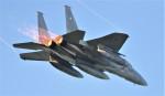M.Ochiaiさんが、新田原基地で撮影した航空自衛隊 F-15J Eagleの航空フォト(飛行機 写真・画像)