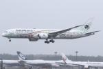 kinsanさんが、成田国際空港で撮影したアエロメヒコ航空 787-9の航空フォト(飛行機 写真・画像)