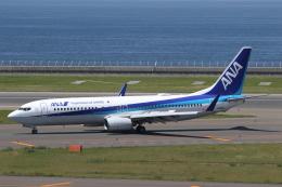 ANA744Foreverさんが、中部国際空港で撮影した全日空 737-881の航空フォト(飛行機 写真・画像)