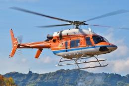 ブルーさんさんが、静岡ヘリポートで撮影した新日本ヘリコプター 427の航空フォト(飛行機 写真・画像)