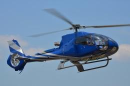 ブルーさんさんが、静岡ヘリポートで撮影した静岡エアコミュータ EC130B4の航空フォト(飛行機 写真・画像)