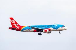 01yy07さんが、香港国際空港で撮影したエアアジア A320-216の航空フォト(飛行機 写真・画像)