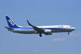 kumagorouさんが、仙台空港で撮影した全日空 737-8ALの航空フォト(飛行機 写真・画像)