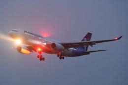 木人さんが、成田国際空港で撮影したハワイアン航空 A330-243の航空フォト(飛行機 写真・画像)