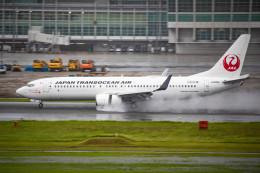 アローズさんが、福岡空港で撮影した日本トランスオーシャン航空 737-8Q3の航空フォト(飛行機 写真・画像)