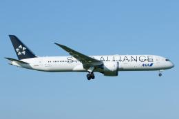 よっしぃさんが、成田国際空港で撮影した全日空 787-9の航空フォト(飛行機 写真・画像)