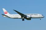 よっしぃさんが、成田国際空港で撮影した日本航空 787-8 Dreamlinerの航空フォト(飛行機 写真・画像)
