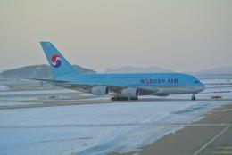 bachi51さんが、仁川国際空港で撮影した大韓航空 A380-861の航空フォト(飛行機 写真・画像)