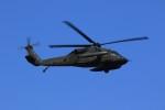 メンチカツさんが、厚木飛行場で撮影したアメリカ陸軍 UH-60L Black Hawk (S-70A)の航空フォト(飛行機 写真・画像)
