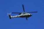 メンチカツさんが、厚木飛行場で撮影したアメリカ海軍 SH-60F Seahawk (S-70B-4)の航空フォト(飛行機 写真・画像)