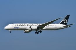 sonnyさんが、成田国際空港で撮影した全日空 787-9の航空フォト(飛行機 写真・画像)