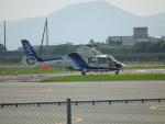 ヒコーキグモさんが、広島へリポートで撮影したオールニッポンヘリコプター AS365N2 Dauphin 2の航空フォト(飛行機 写真・画像)