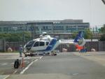 ヒコーキグモさんが、広島へリポートで撮影したオールニッポンヘリコプター EC135T2の航空フォト(飛行機 写真・画像)