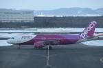 T.Kawaseさんが、新千歳空港で撮影したピーチ A320-214の航空フォト(飛行機 写真・画像)