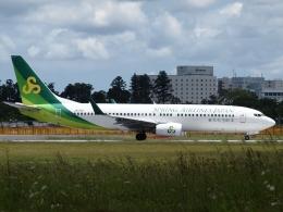 FT51ANさんが、成田国際空港で撮影した春秋航空日本 737-81Dの航空フォト(飛行機 写真・画像)