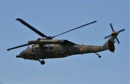 Smyth Newmanさんが、宇都宮飛行場で撮影した陸上自衛隊 UH-60JAの航空フォト(飛行機 写真・画像)