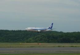 Smyth Newmanさんが、新千歳空港で撮影した全日空 737-881の航空フォト(飛行機 写真・画像)