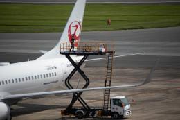 アローズさんが、福岡空港で撮影したJALエクスプレス 737-846の航空フォト(飛行機 写真・画像)