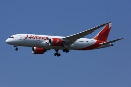 ふぉっくすさんが、成田国際空港で撮影したアビアンカ航空 787-8 Dreamlinerの航空フォト(飛行機 写真・画像)